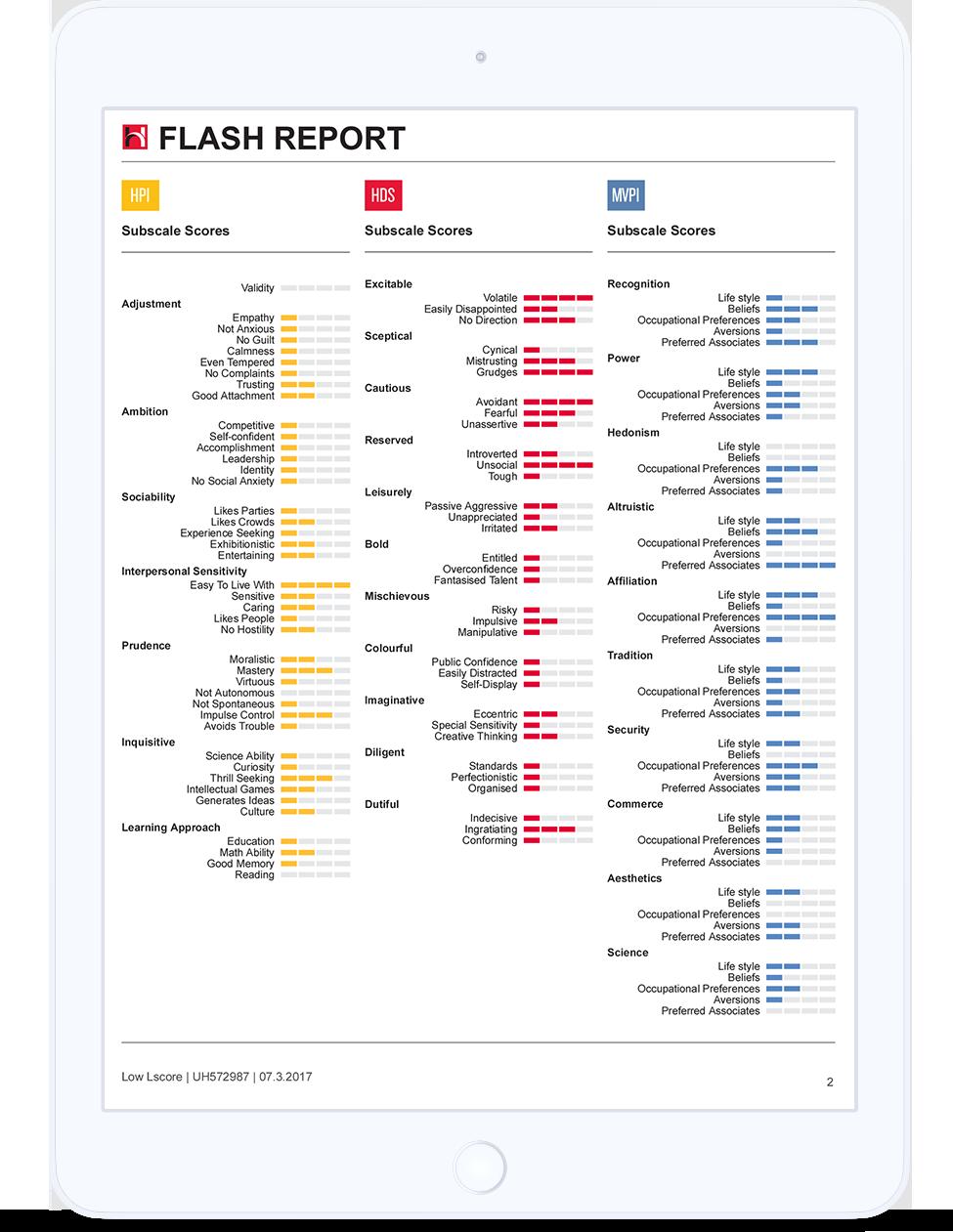 Flash Report iPad 1