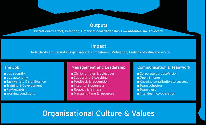 Surveys Our Approach Engagement